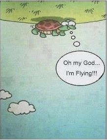 Oh my God! I'm Flying!!